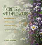 Secrets of Wildflowers